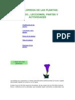 Enciclopedia de Las Plantas-walek