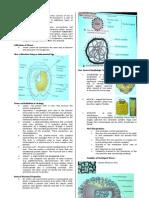 Virology Lec 1