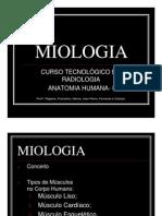 Miologia III