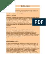 PATOLOGÍAS neuroanatomia