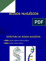 Biologia Molecular Aula Uepb