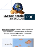 Níveis de Organização em Ecologia