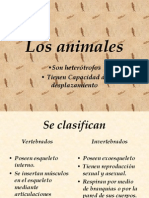 fdocumentsandsettingsadministradormisdocumentoslosanimales-090326173001-phpapp01