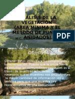 ANÁLISIS DE LA VEGETACIÓN, (Area minima)