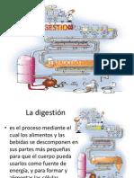 digestionaa-1225598709677971-9
