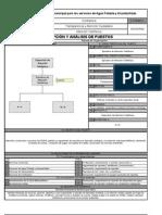 Analisis Del Puesto y Perfil Ejecutivo 2009