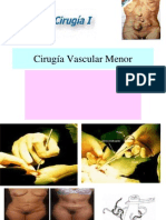 wfCirugía Vascular Menor