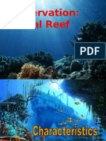 Conservation Coral Reef