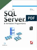 SQL Server 2008 4Baski