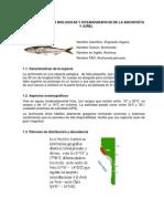 Caracteristicas Biologic As y Oceanograficas de La Anchoveta y Jurel