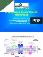 (1) LEC. 2 Membranas