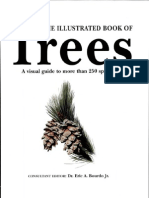 Illustrated Book of Trees Hungraphics