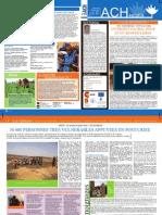 Niger - Newsletter noviembre 2011