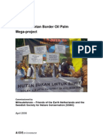 Palm Oil Mega Project