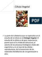 La Célula Vegetal