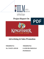 Kingfisher Project