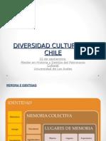 Divers Id Ad Cultural en Chile