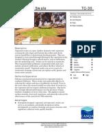 California; Vegetated Swale - California Stormwater BMP Handbook