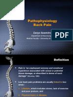 Back Pain Pathophysiology