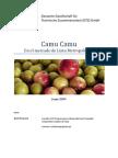 Camu camu - desarrollo del mercado local. Parte 1
