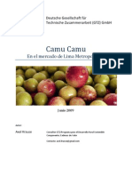 Camu camu - desarrollo del mercado local. Parte 1