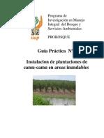 Guía práctica N° 2 - Instalación de plantaciones de camu camu en áreas inundables