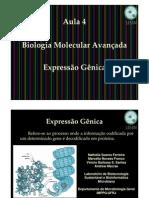 aula4-biologiamolecular