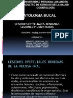 Lesiones Epiteliales Y Lesiones Pigmenatarias