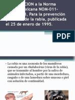 Clase Salud Publica Rabia