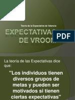 EXPECTATIVAS DE VROOM