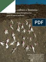 Trauma Cultura e Historia, InTRO (2011)