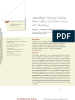 Autofagia y Stres Cardiaco2011