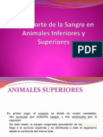 Animaless Superiores e Inferiores