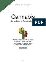 2000 Junge Liberale Schleswig-Holstein - Cannabis - Die Verb