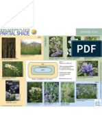 Wisconsin; Rain Garden Plants for Partial Shade - City of Madison