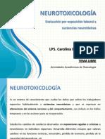 Tema libre. Evaluación Neurotoxicológica. Carolina