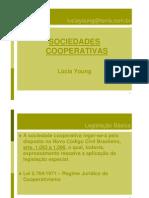 A Natureza Economica Da Cooperativa e Os Direitos de Propriedade No Cooperativismo