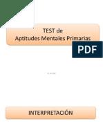 Variables Del Test PMA
