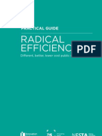 Radical Efficiency Practical Guide
