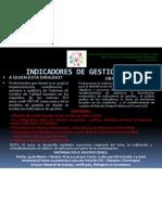 INDICADORES DE GESTION.2