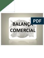 SEMINÁRIO BALANÇA COMERCIAL