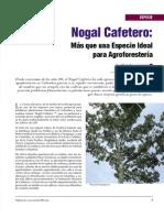 especie_nogalcafetero