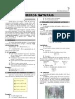 Mat Fund _010 Numeros Naturais