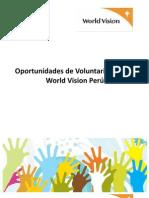 2012 Voluntariado Manchay