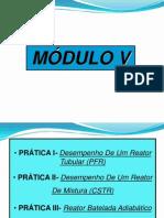 apresentação Módulo V