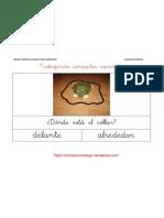 DELANTE- ALREDEDOR