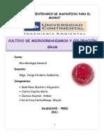 Micro Informe 2