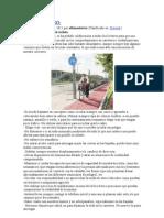 Decalogo Del Ciclista
