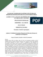 Seringueira - Análise de Viabilidade Economico-Financeira