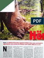 NEWS Nr.46 - Letze Hörner